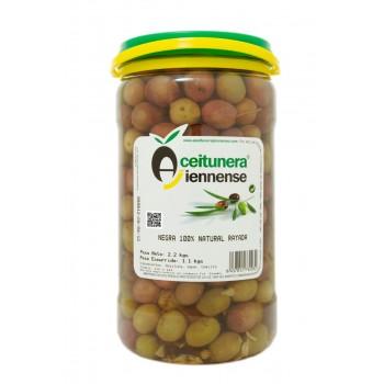 Surtido 100 % Natural | Aceitunera Jiennense | Surtido 6 Botes de Aceitunas 100 % Naturales de Jaén